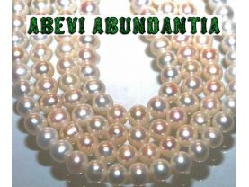 White South Sea Pearl Necklace* 8-9mm  AAA