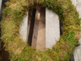Preserved moss wreath, 16 inch moss wreath, moss wreath, wreath form, craft wreath, wreath base, woodland wreath, woodland wedding