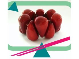 Beaded red bracelet made from palm nut