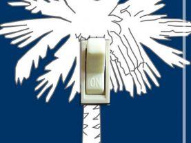 SOUTH CAROLINA State FLAG Single Switch Plate
